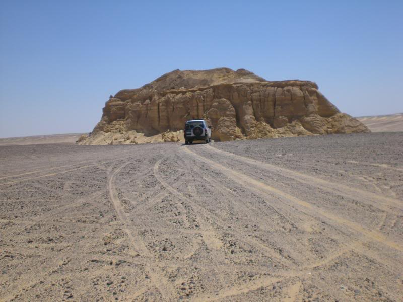 Wadi Hitan and nearby - OnlyMark trip reports